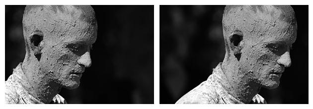 Fíjate en la diferencia entre una foto y otra. La foto de la izquierda está mejor equilibrada y tiene más fuerza que la de la derecha porque el sujeto tiene la cara orientada hacia la derecha. Por eso la colocamos a la izquierda.
