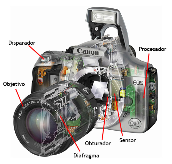 Curso de fotografia analoga pdf